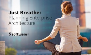 Enterprise Architecture: Just Breathe and Find the Time to Plan
