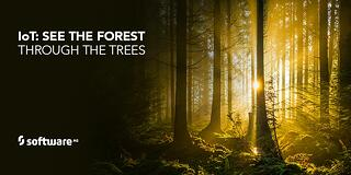 SAG_Twitter_MEME_IoT_See_The_Forest_880x440_PT_Jan18_draft1.jpg