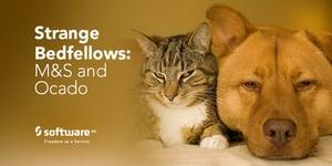 SAG_Twitter_MEME_Strange_Bedfellows_Feb19