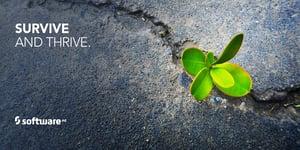 SAG_Twitter_MEME_Survive-and-Thrive_880x440_Jul18