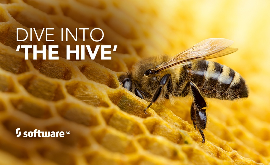 Software AG Dives into 'The Hive'