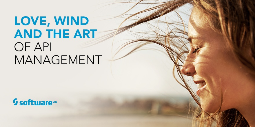 The Answer to API Management is Blowing in the Wind